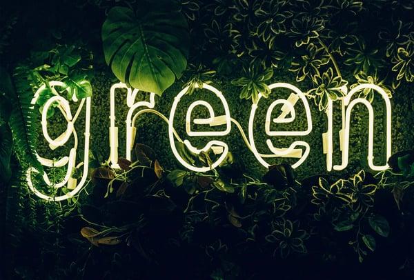 Green - Carbon Balanced Landing Page