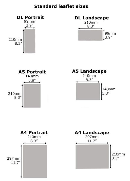leaflet sizes